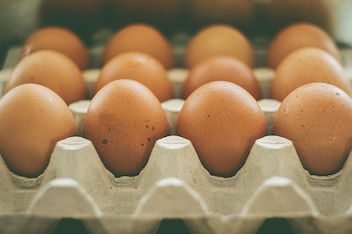 eggs-933722_640.jpg