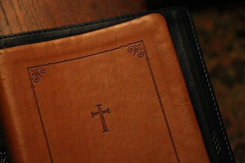 feature_bible_catholic_colleges