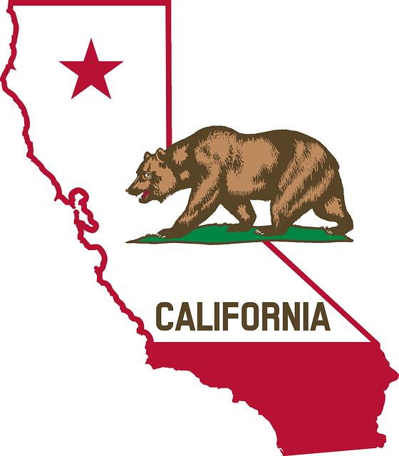 feature_californiabear
