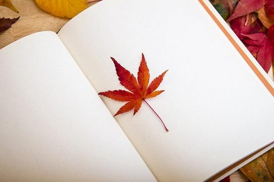 feature_leafandbook.jpg