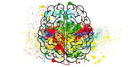 feature_psychology_brain