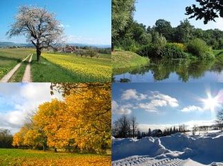 feature_seasons.jpg