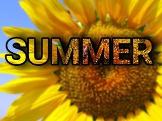 feature_summer.jpg