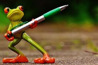frog-1446237_1920-1.jpg