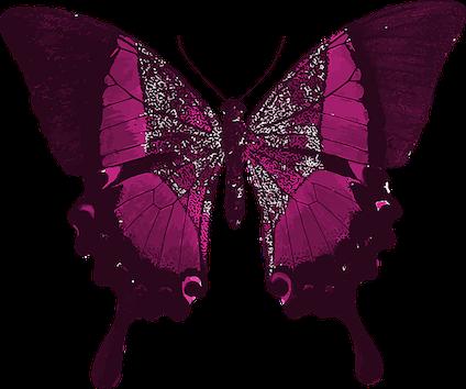 pink-1241705_640.png