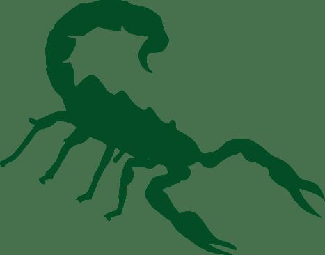 scorpion-309388_1280
