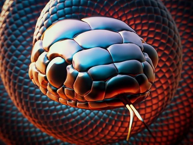 snake-1468932_640.jpg