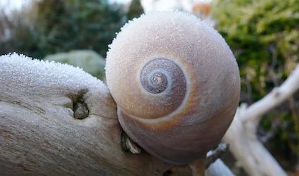 winter-984644_640.jpg