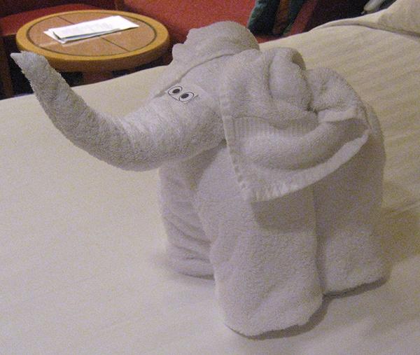 body_elephant.jpg