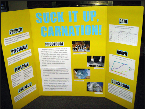 high school science projects pdf