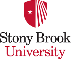 body_stony_brook.png