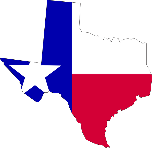 body_texas.png