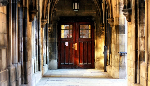 university of chicago favorites essay These are my two supplement essays for the university of chicago  would you  please tell us about a few of your favorite books, poems,.